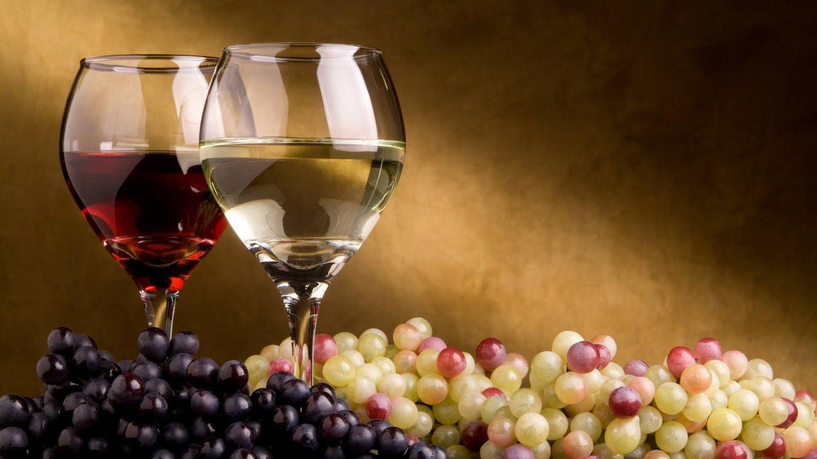degustazione vini hotel romantic